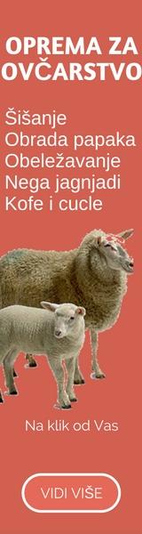 VetShop ovce