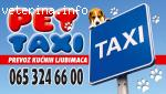 PET-TAXI (PREVOZ KUCNIH LJUBIMACA)BEOGRAD TEL.065 324 66 00