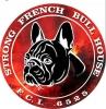 Francuski Buldog stenci