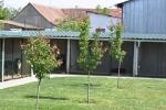 Pansion i trening centar za pse Kikinda
