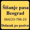 Sisanje pasa profesionalnom opremom Beograd