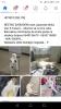 Ukraden pas rase japanska akita